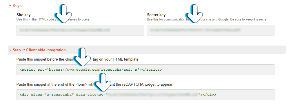 Google reCAPTCHA API Keys example